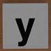 Duplo letter y