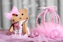 ♛ Royal Danbo  Waiting For her Prince Charming  ♛ photo by SaRa Meow  .. / @sosoMeow