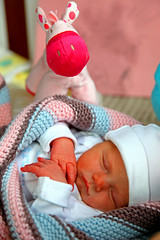 Little Princes Anne Sofie (My niece!!!!) photo by kees straver (will be back online soon friends)