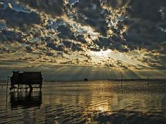 Rays of evening light photo by robsm