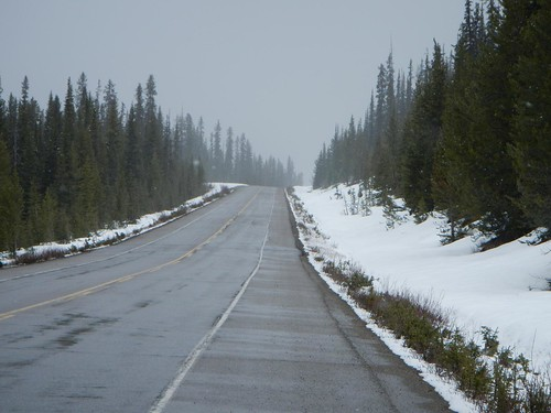 Everyday for 7 Weeks - Day7 - Banff to Hinton
