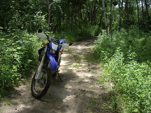 Playing with my WR250R off-road