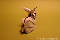 ウサギ / Rabbit photo by Gen Hagiwara