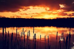 Sunset Story photo by Marc Benslahdine
