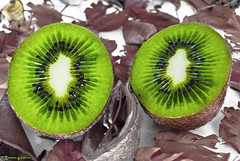 Kiwis. [EXPLORED] photo by © Mario Gutiérrez Photographer