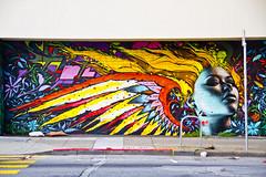 Turk Angel photo by tapbirds
