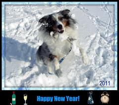 Happy New Year! photo by jodispayne.....Mostly off :(