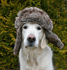 Ditte with my warm winter hat! photo by Ingrid0804