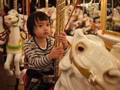 Castle Carousel, Fantasyland, Tokyo Disneyland photo by e_chaya