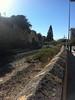 Walking Fremantle
