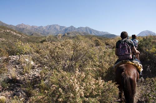 Mendoza Horse Riding