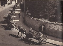 Les allemands font retraite vers Dole- Source : éditions GP - Du Tchad au Danube