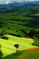 Volterra photo by vanto5