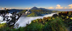 Bromo photo by tropicaLiving - Jessy Eykendorp