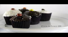 CupCake photo by ||~ فـراس الفريجـي