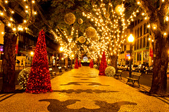 Christmas in Funchal, Madeira photo by JayGriffin