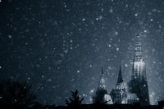 White Christmas? photo by christian.senger