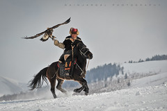 Kazakh eagle hunter photo by Sainaa|photography
