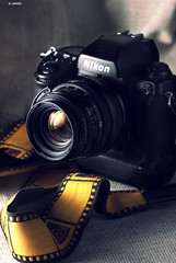 Nikon F5 with Hasselblad Carl Zeiss T* 80mm f2.8 . photo by DeusXFlorida (7,110,780 views) - thanks guys!