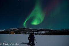 Aurora Borealis over Festvåg photo by Gaute Froystein Photography