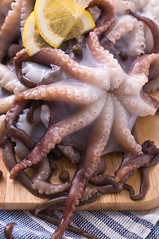 Raw octopus photo by vanilllaph