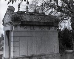 Kensal Green Cemetery, London photo by Stoptimephoto