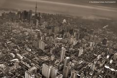 Toronto Unlimited photo by TIA International Photography