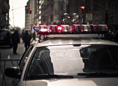 police car // new york photo by pamela ross