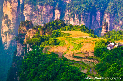 Sky Farmland, Zhangjiajie China photo by Feng Wei Photography