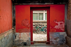 71/365 March 12 - Biking in Beijing photo by Sharon Drummond
