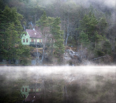 The mist-erious green house! photo by Arnfinn Lie, Norway