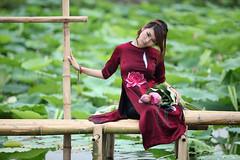 Trong đầm gì đẹp bằng Sen ...... [Explore] photo by tana tung tẩy