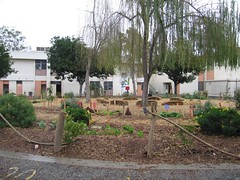 24th Street ES courtyard garden