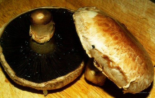 Recipe : Baked portobello mushroom with cheese