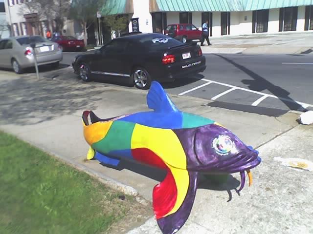 Jackson Catfish 1