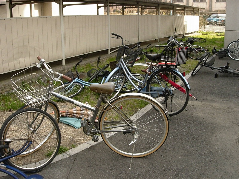 bikes in front of our dormitory