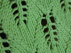 Citron vert Kiri closeup