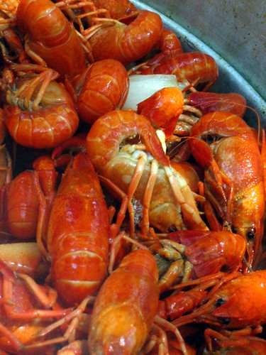 The crawfish, they are finished.