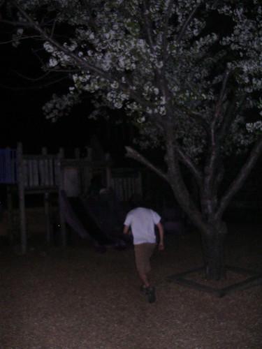 Boette Runs to the Slide