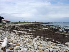 Spanish Bay - Rocky