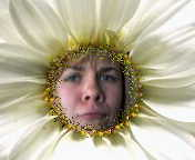 I'm Amanda, the sad flower