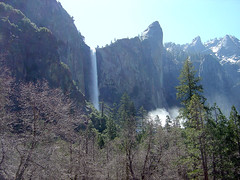 Yosemite - Bridaveil Fall