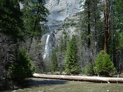 Yosemite - Creek & Fall