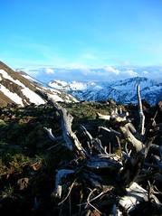 Android Peak  on left behind slope of East peak