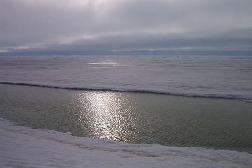 Artic Ocean
