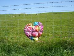 Happy deflated birthday!