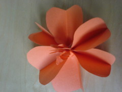 paper flowers 10