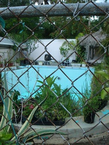 Shangrila Pool