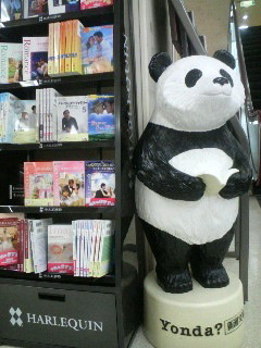 Panda in the romance section