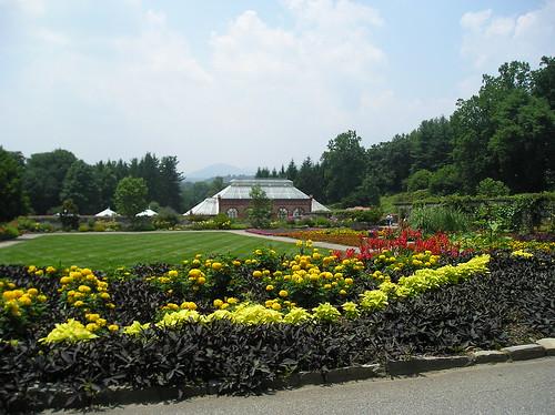 B-more gardens